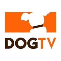 Dogtv coupons