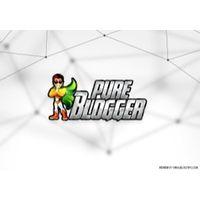 PureBlogger.net coupons