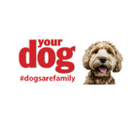 Yourdog coupons