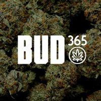 Bud365 coupons