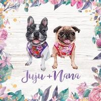 Juju + Nana coupons